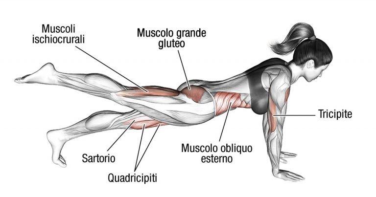 4 tipi di flessioni che tonificano braccia e addominali contemporaneamente